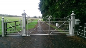 Metal Gates (11)