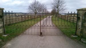 Metal Gates (6)