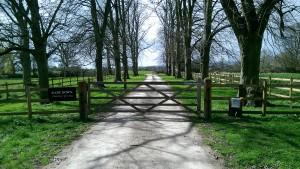 Wooden Gates (25)